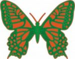 exotic-butterfly-extra-large-jpg
