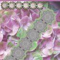 flower-5-leaves-piont-1425285921-jpg