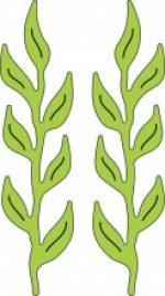 iris-leaves-jpg