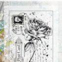 old-letter-rose-1425328177-jpg