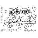 owl-love-1424559435-jpg