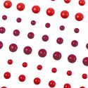 winter-berry-jpg