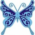exotic-butterfly-large-jpg