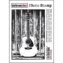 guitar-1426198524-jpg