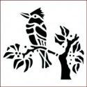 kingfisher-jpg