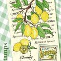 cloudy-lemonade-1417450176-jpg