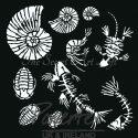 fossilized-30-x-30-stencil-jpg